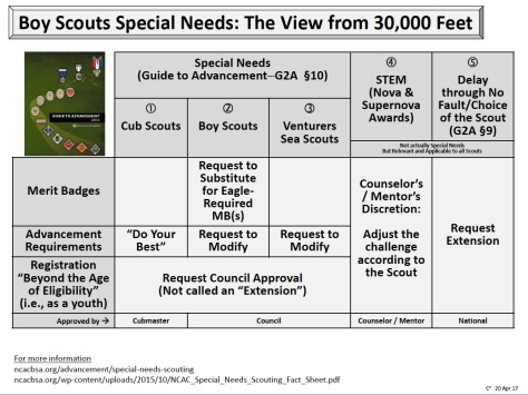 Special needs advancement requirements